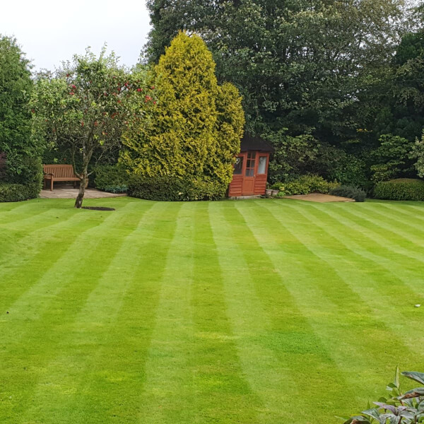 Recently mowed grass in large garden with trees